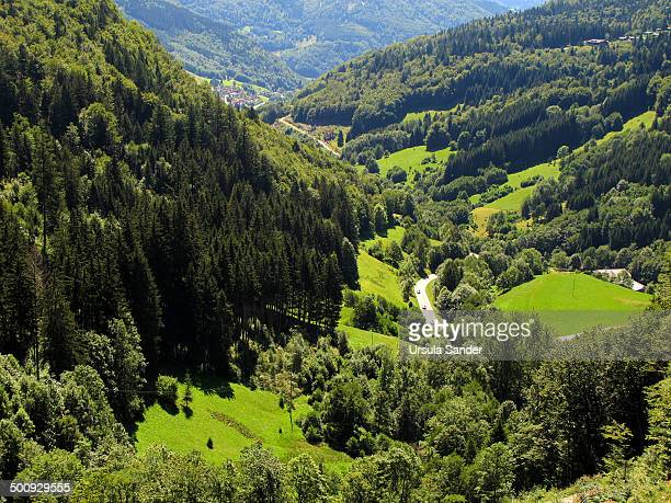 Valley near Todtnau, Black Forest, Germany