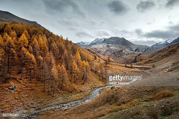 Valley of Lauzanier Mercantour National Park