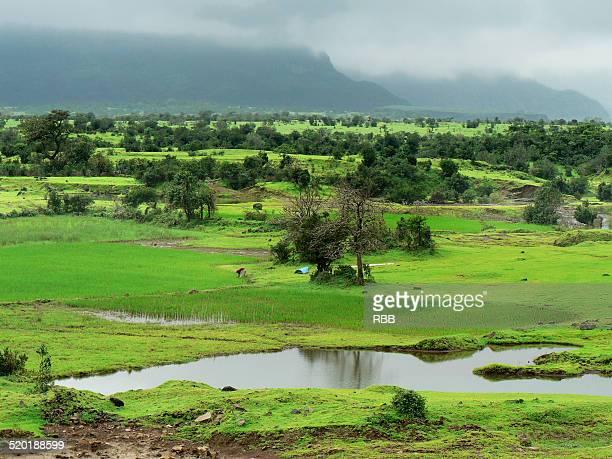 Valley of Malshej Ghat