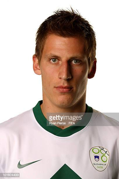 Valter Birsa of Slovenia poses poses during the official FIFA World Cup 2010 portrait session on June 9 2010 in Johannesburg South Africa