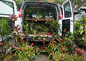 Van filled with plants