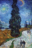 Van Gogh Country road in Provence by night 1880 By Vincent Van Gogh