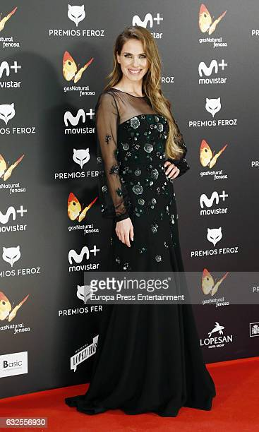 Vanesa Romero attends the 2016 Feroz Cinema Awards at Duque de Patrana Palace on January 23 2017 in Madrid Spain