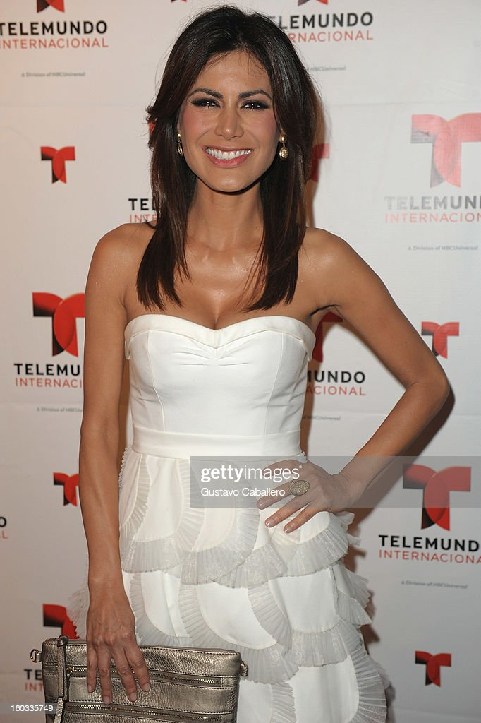 Vanessa Hauc attends Telemundo International NATPE VIP Party at Bamboo Miami on January 28, 2013 in Miami, Florida.