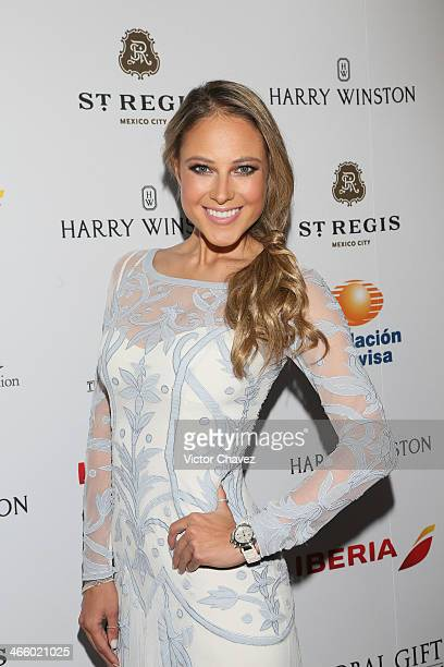 Vanessa Huppenkothen attends the Global Gift Gala Mexico City red carpet at St Regis Hotel on January 30 2014 in Mexico City Mexico