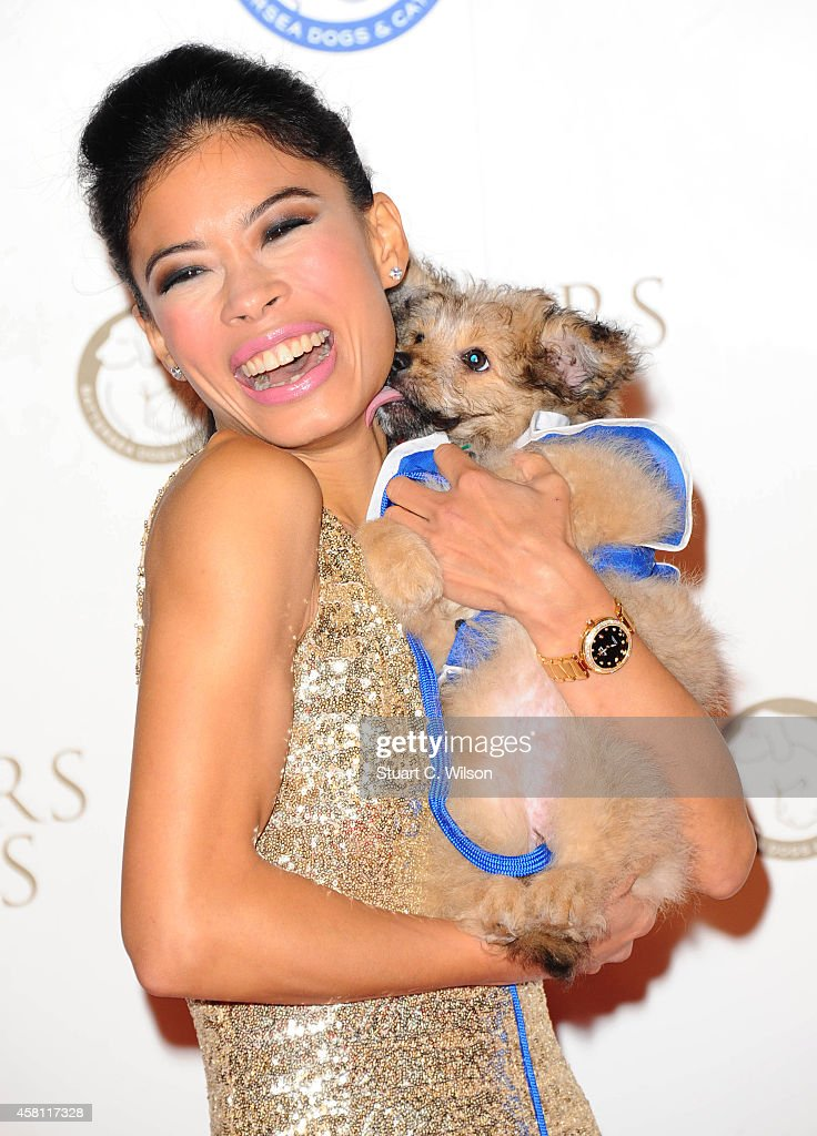 <a gi-track='captionPersonalityLinkClicked' href=/galleries/search?phrase=Vanessa+Mae&family=editorial&specificpeople=212716 ng-click='$event.stopPropagation()'>Vanessa Mae</a> attends the annual Collars & Coats Gala Ball in aid of The Battersea Dogs & Cats home at Battersea Evolution on October 30, 2014 in London, England.