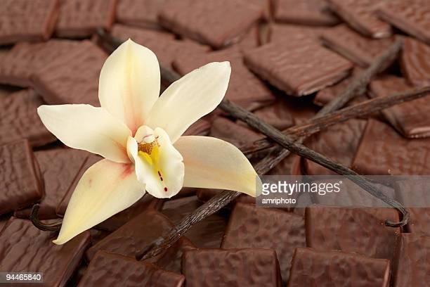 Vanille und Schokolade