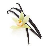 Vanilla beans and an orchid on white