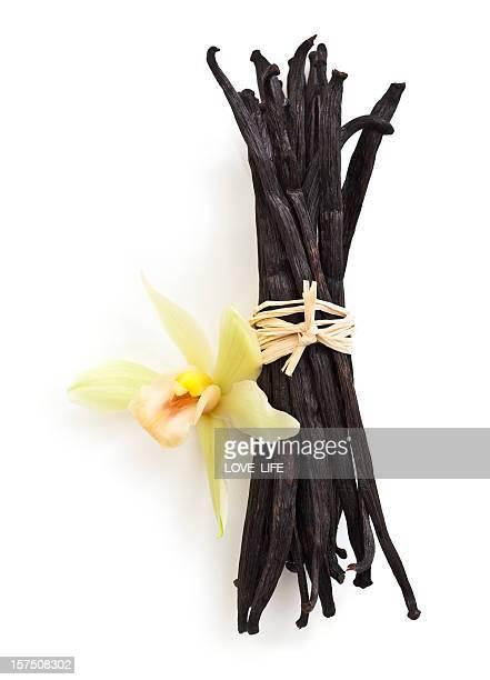 Vanilleschoten und Orchidee