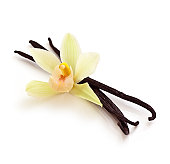 Vanilla Beans and Orchid