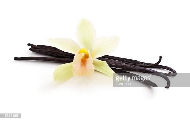 Vanilla Beans bunched together with a White Orchid on top