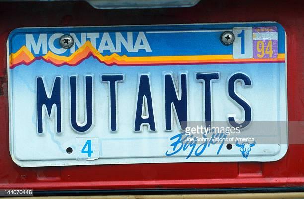 Vanity License Plate Montana