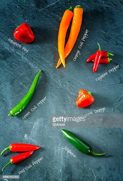 Vielfalt von Chili Peppers von mildes bis warmes würzigen Note