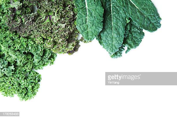 Varieties of Fresh Kale White Background with Copy Space Hz