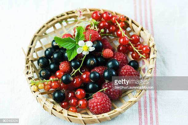Variety of berries in wooden basket