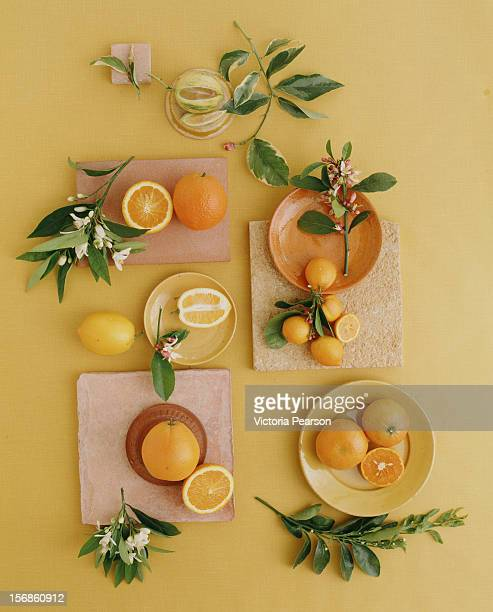 A variety of citrus and blossoms.