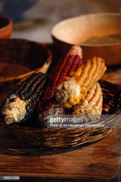 Variety of dried corn