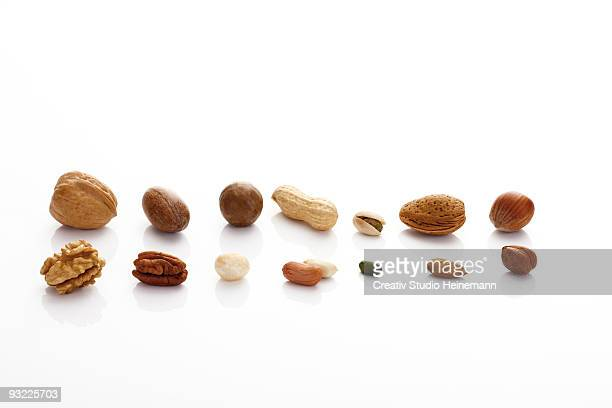 Row of various nuts on white background