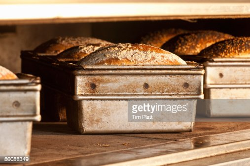 Various bread loaves in baking tins in the oven.