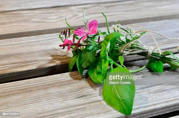 Various culinary herbs