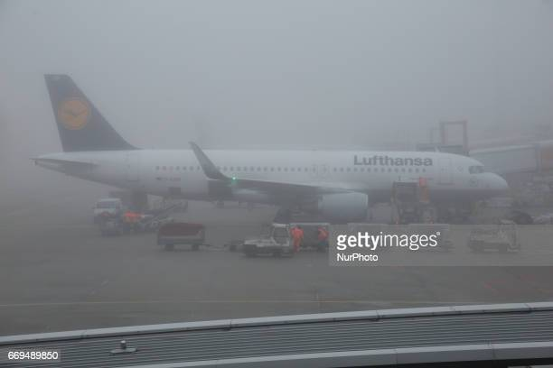 Various images during a misty day inside the airport terminal the gates outside of the terminal and the apron with various airplanes and airlines in...
