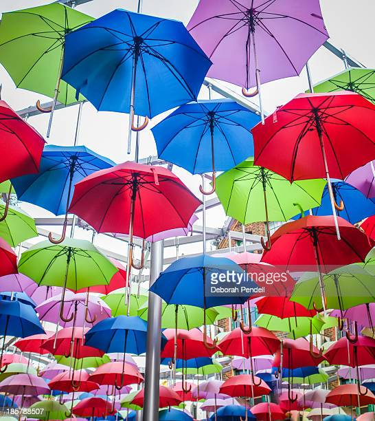 Various open umbrellas suspended  in the air