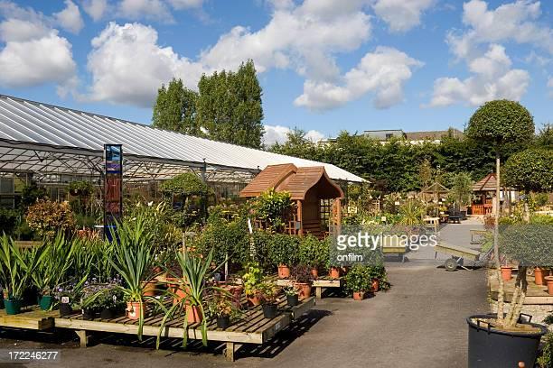 Various plants in a garden center