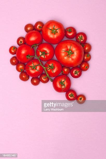 Various sizes of tomatoes arranged into the shape of a speech bubble