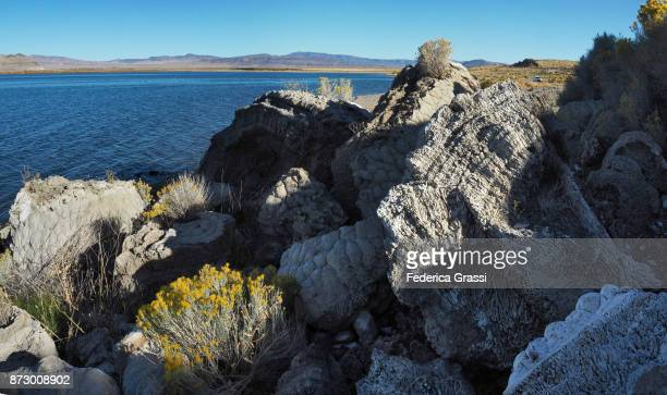 Various Tufa Formations Along Pyramid Lake, nevada