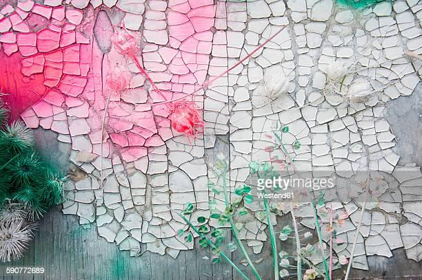 Varnishing dried flowers