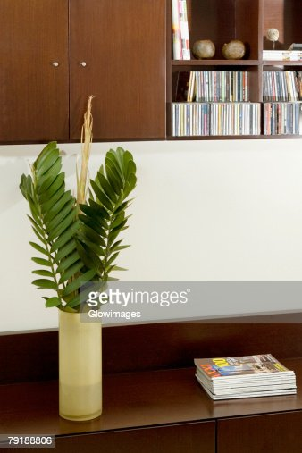 Vase and magazines on a table : Stock Photo