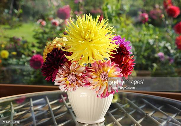 Vase of dahlias picked from garden in autumn