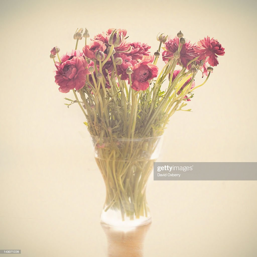 Vase of flowers on table : Stock Photo