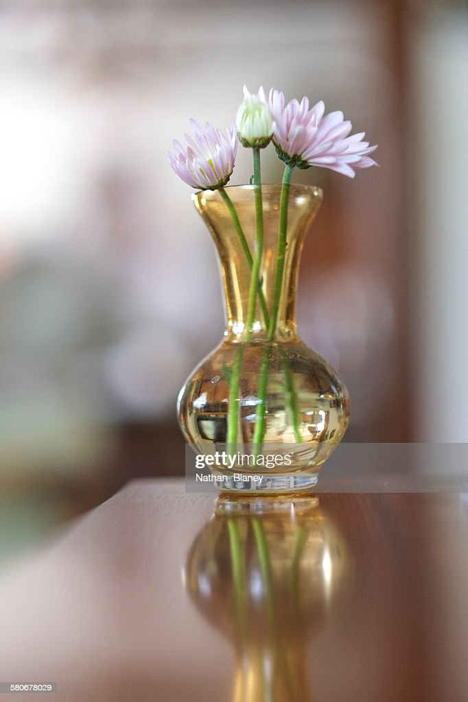 Vase of flowers : Stock Photo