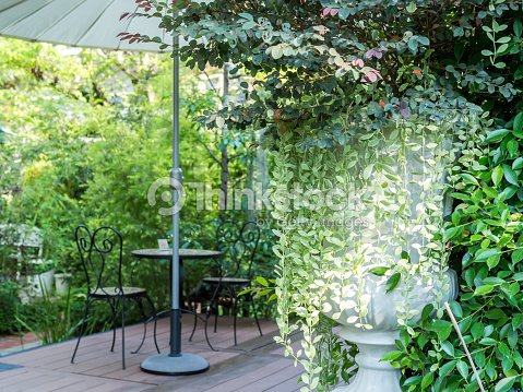 Vase De Plantes Avec Le Fil Dun Fauteuil Dans Un Jardin Anglais