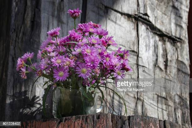 Vase of Purple Aster amellus in wooden background