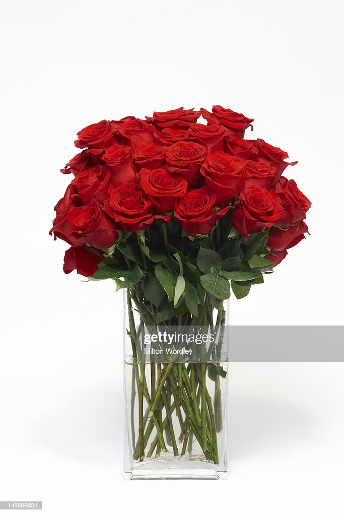 vase of red roses : Stock Photo