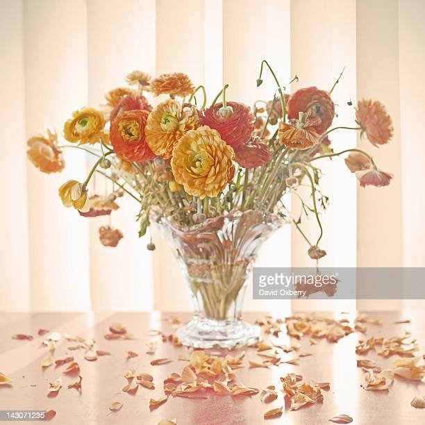 Vase of wilting flowers on table