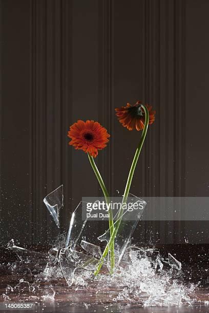 A vase shattering