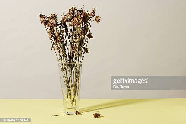 Vase with dead flowers