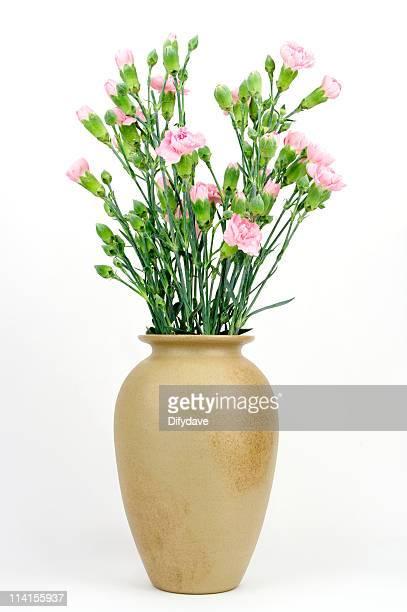 Vase mit rosa Carnations