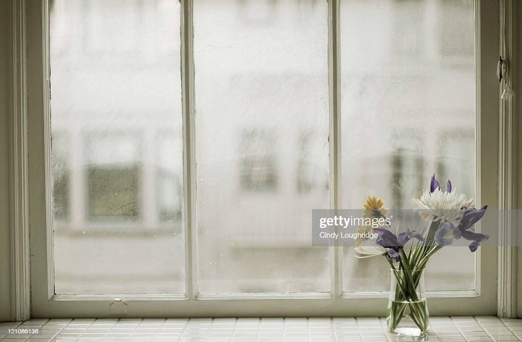 Vased flowers on sill of apartment window : Stock Photo