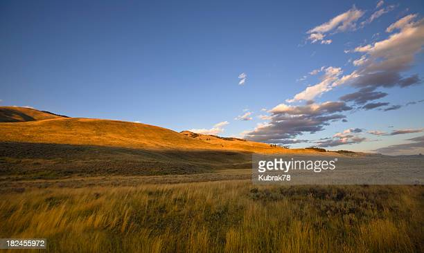Vast and Empty Landscape at sunset