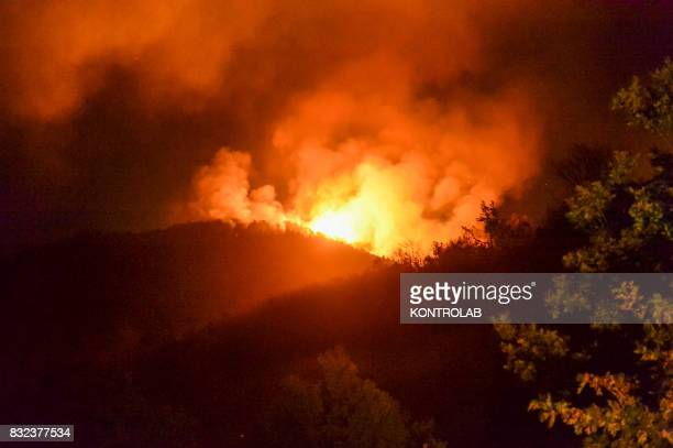 SILA LONGOBUCCO CALABRIA ITALY A vast fire in the Sila mountains in Calabria southern Italy