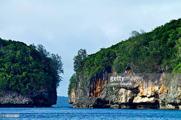 Lush forest above a channel eroded between two limestone islands.