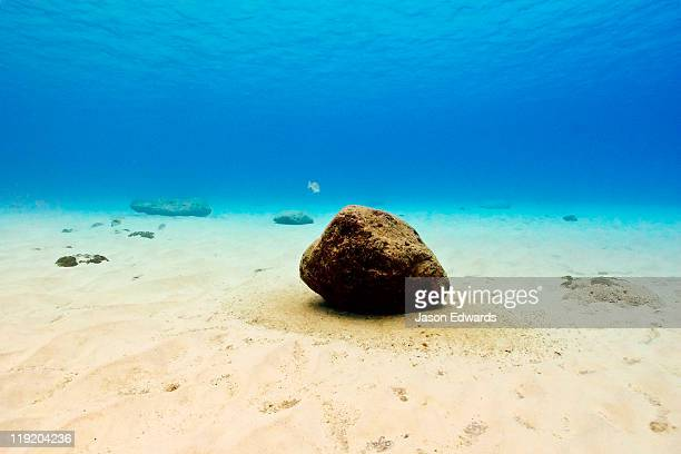 A lonely boulder rests on the sandy bottom of a clear tropical ocean.