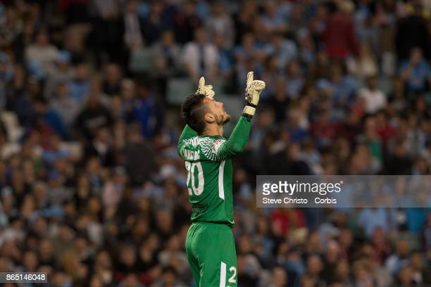 Vedran Janjetovic of the Wanderers looks to the heavens during the round three ALeague match between Sydney FC and Western Sydney Wanderers at...
