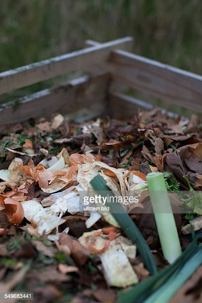 Vegetable and autumn leaves on a compost