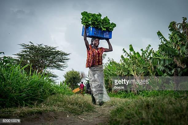 Di verdura Agricoltore