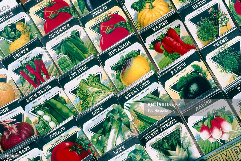 Vegetable Seed Packets : Stock Photo